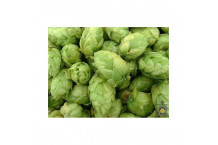 Brewers Gold FLOR - 1 Kg.