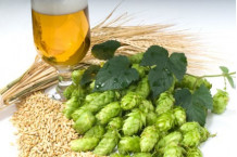 Kitchen Beer Receta Pale Ale Molida 11 Litros
