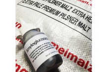 AMYLOGLUCOSIDASE 300 - ENZIMAS. 15 ml.
