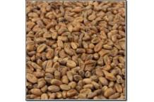 Malta Caramelizada de Trigo Weyermann®. 1 Kg