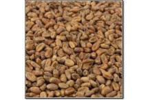 Malta Caramelizada de Trigo Weyermann® - 500 g