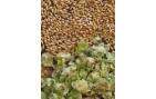 Kits de elaboración de cerveza a partir de grano