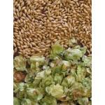 Kits de elaboracion de cerveza a partir de grano.