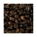 Malta Carafa® Tipo III  -  Black Weyermann®